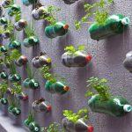 Macetas con botellas de plastico recicladas